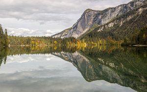 Herbst-Reflexionen von Gunther Cleemput