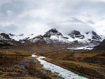 Columbia Icefield, Canada van Daan Duvillier