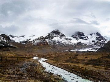 Columbia Icefield, Kanada von Daan Duvillier