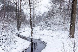 Winters boslandshap met een slootje er doorheen. van Henk Van Nunen