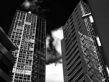 Sunshine in B&W von Dennis Wielders