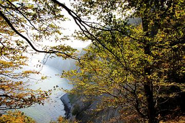 Kreidefelsen Im Nebel van Ostsee Bilder