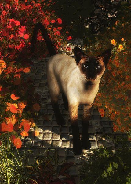 Katten – Een Siamese kat kijkt van Jan Keteleer