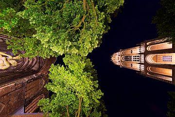 Lumineux tour et la cathédrale Dom vue de dessous