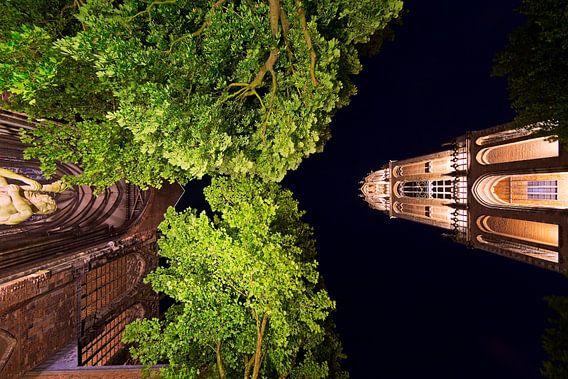 Verlichte Domtoren en Domkerk van onderen gezien