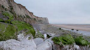 Met mos begroeide rotsen op het strand aan de Opaalkust