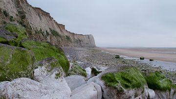 Met mos begroeide rotsen op het strand aan de Opaalkust van Suzan Baars