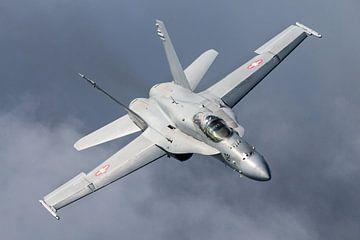 Zwitsers F/A-18 gevechtsvliegtuig van Kris Christiaens