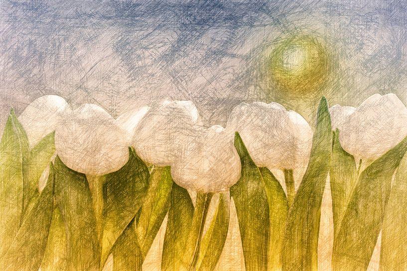 weiße Tulpen van Dagmar Marina