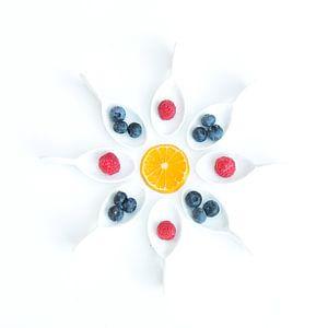 fruit rond II