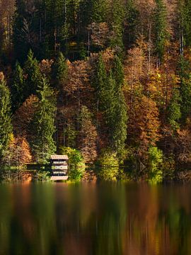 Herbst am Freibergsee von Max Schiefele