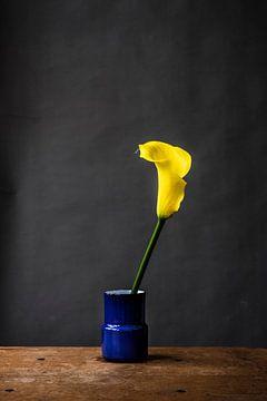 Gele bloem van Jenneke Boeijink