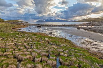 Fjordenkust Helgeland van