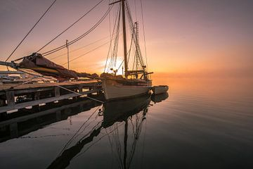 Ölands potato boat van Marc Hollenberg