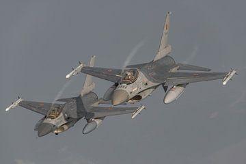 2 F-16's van de Belgische Luchtmacht die deel uitmaken van de Thunder Tigers mooi in het zonnetje va van Jaap van den Berg