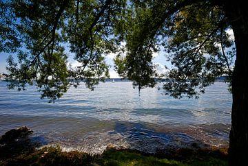 Bodenmeer van Thomas Jäger