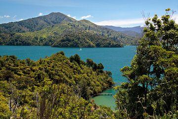 Marlborough Sounds, Nieuw Zeeland van Christian Müringer