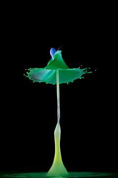 Liquid ART - grüner TaT von Stephan Geist