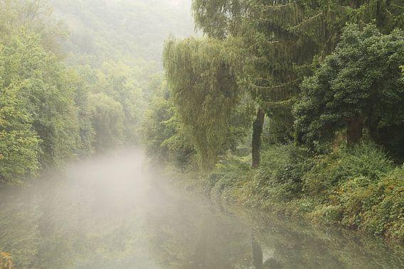 Een met nevel bedekte rivier slingert door het groene landschap van Paul Wendels