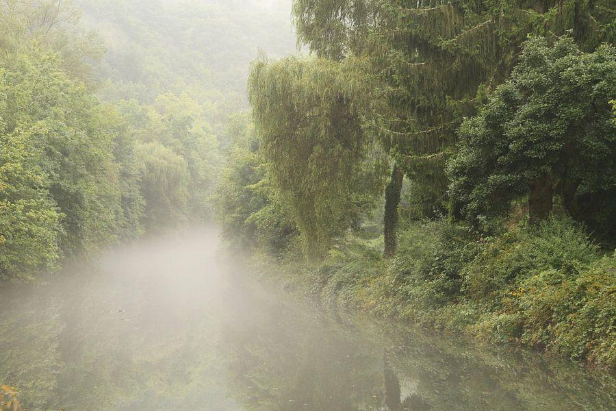 Een met nevel bedekte rivier slingert door het groene landschap