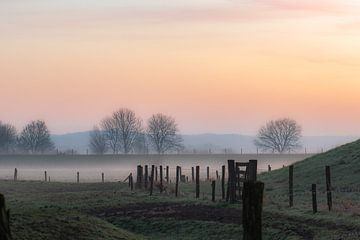 brumeux et rural sur Tania Perneel