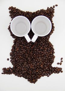Eule in den Kaffeebohnen von Tesstbeeld Fotografie