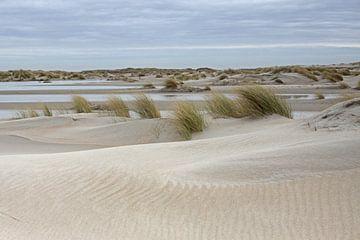 Duinen op Texel van Antwan Janssen
