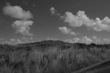 Duinen Texel von Henk van der Sloot