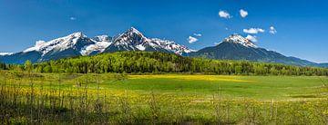 Sonniges Tal vor dem Gebirgszug der kanadischen Rocky Mountains von Rietje Bulthuis