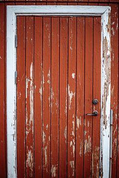 The red door van Yana Spiridonova
