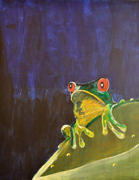 Rotaugenfrosch van Patricia Jaqueline