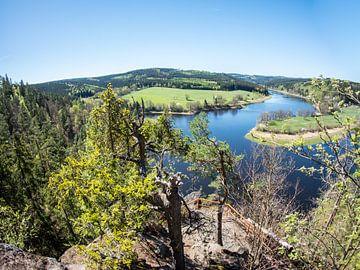Gezicht op de rivier Saale in Thüringen van Animaflora PicsStock