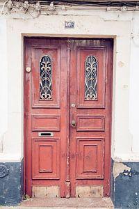 Karakteristieke deur van Marly Tijhaar