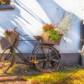 Flower Bicycles sur Roland de Zeeuw fotografie