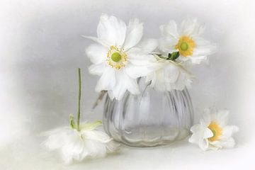 Bloem romantisch - fijn wit van Lizzy Pe