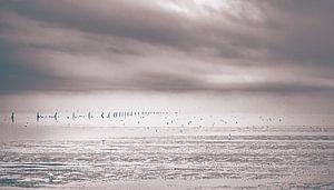 Eenzaam strand bij eb van Cuxhaven aan de Duitse Noordzeekust