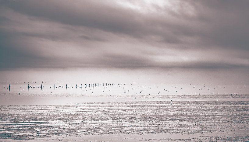 Eenzaam strand bij eb van Cuxhaven aan de Duitse Noordzeekust van Jakob Baranowski - Off World Jack