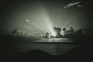 Sonnenlicht von Jacqueline Lemmens