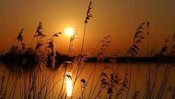 Gouden  zonsondergang van Annemarie Veldman