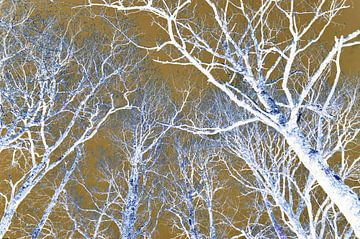 Bomen fantasie van Corinne Welp