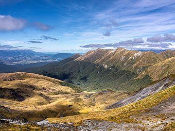 De Boomgrens op de bergketens van Fiordland National Park in Nieuw-Zeeland van Rik Pijnenburg