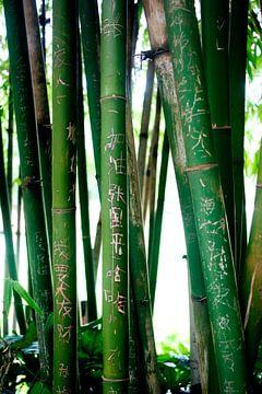 Chinese karakters in bamboe gekerfd von André van Bel