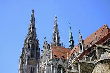 Regensburger Dom van Liz Collet
