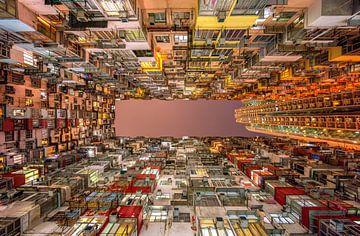La symétrie de Hong Kong sur Reinier Snijders