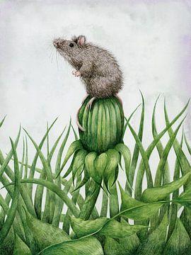 Maus auf Löwenzahn von Marieke Nelissen