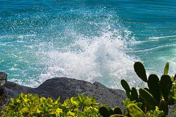 Tropisches Meer von Julian Oude Maatman