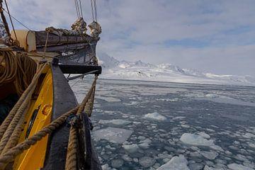 Varen door het ijs van Marieke Funke