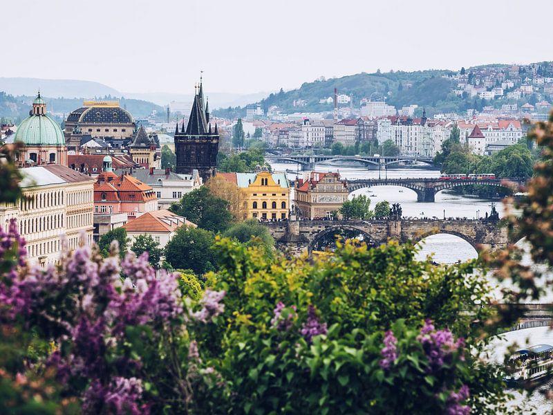 Prague - View from Letná Park van Alexander Voss
