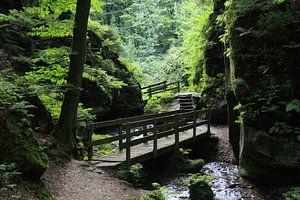 Mooi wandelpad bij Beaufort, Luxemburg van