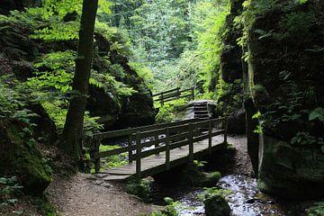 Mooi wandelpad bij Beaufort, Luxemburg van Anko Zwerver